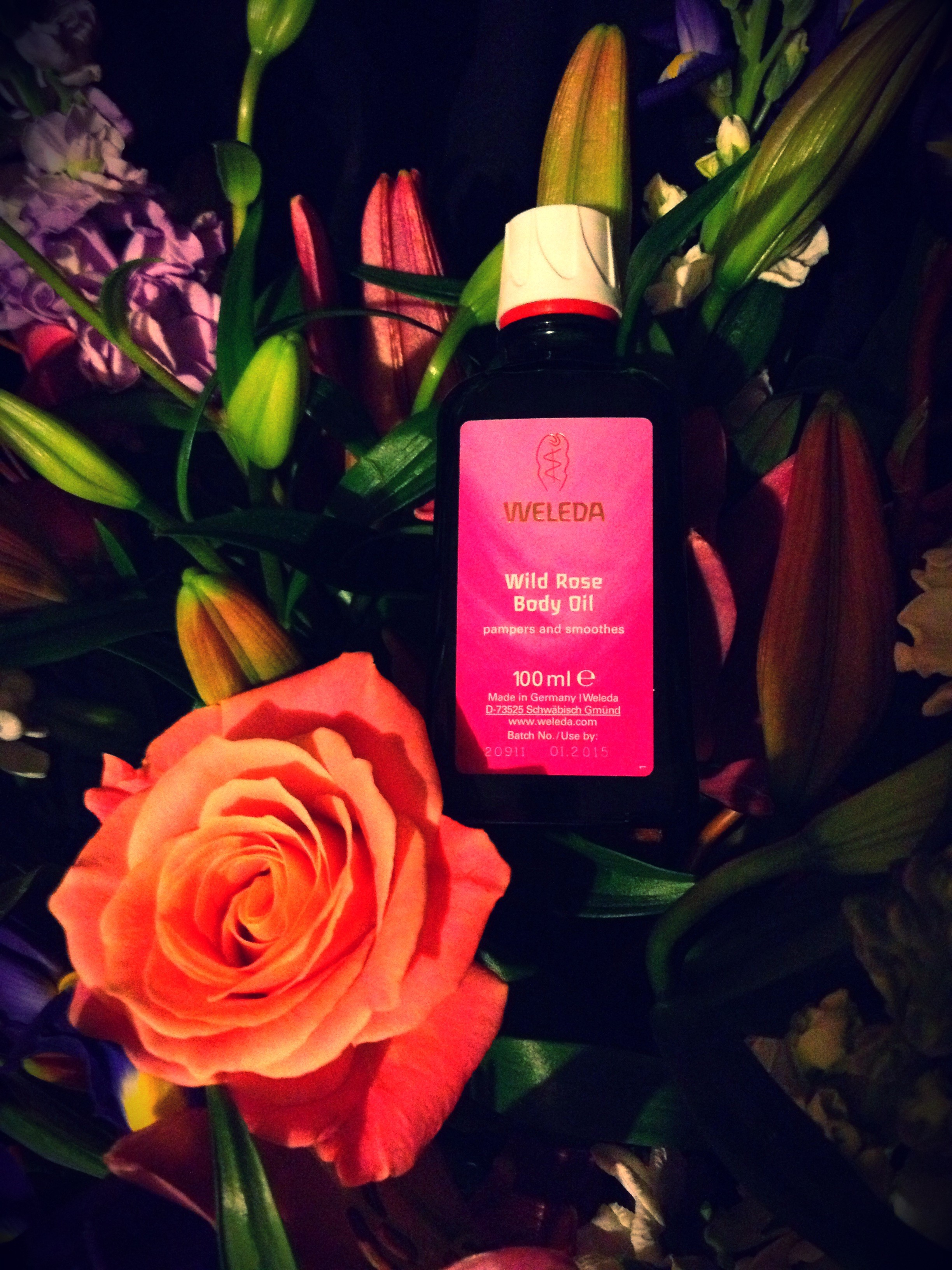 Weleda, weleda wild rose body oil, Body Oil, Rose oil, makeup, beauty, cosmetics, beauty blog nz, fashion blog nz, style blog nz, beauty media nz, fashion media nz, angie fredatovich, gurlinterrupted