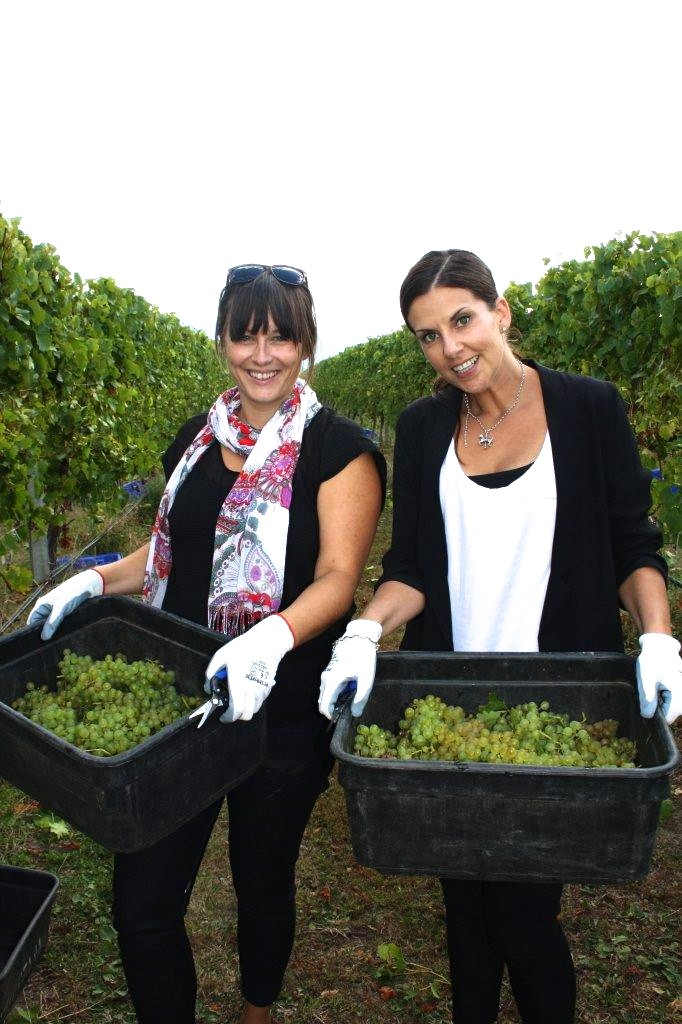 L-R: Kylie Robertson (Brancott Estate) and Me.  Look at all that grape harvesting we did!